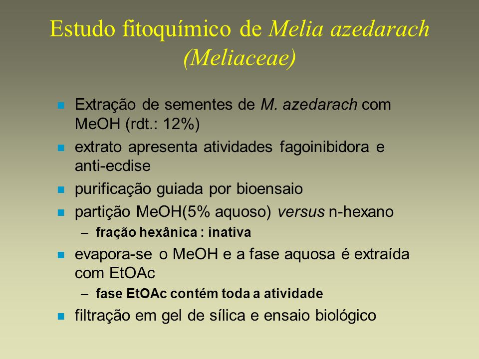 Estudo fitoquímico de Melia azedarach (Meliaceae)