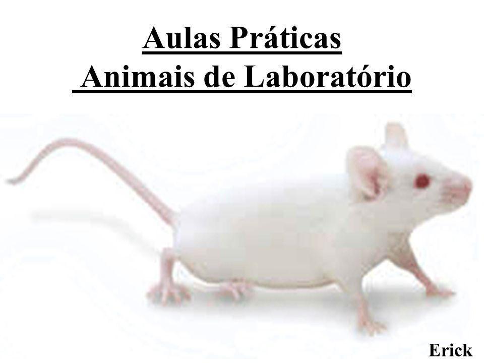 Aulas Práticas Animais de Laboratório