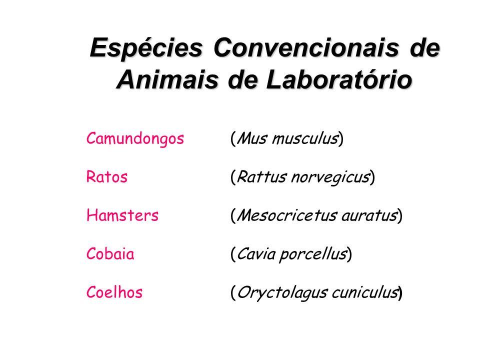 Espécies Convencionais de Animais de Laboratório