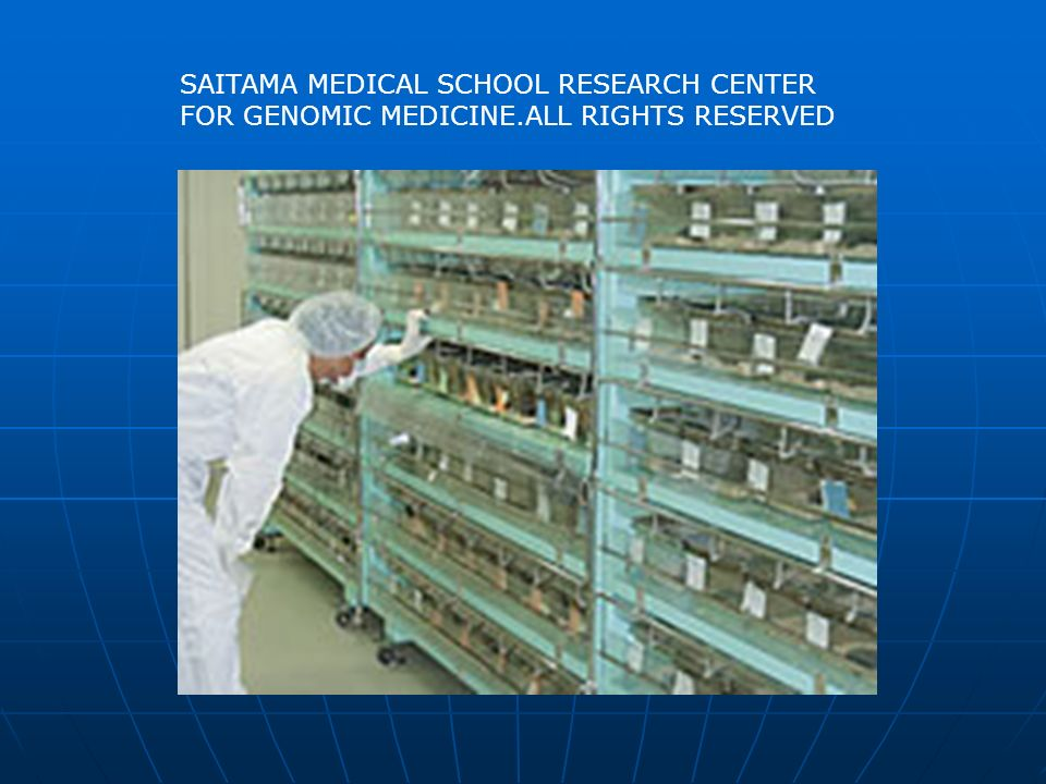 SAITAMA MEDICAL SCHOOL RESEARCH CENTER FOR GENOMIC MEDICINE