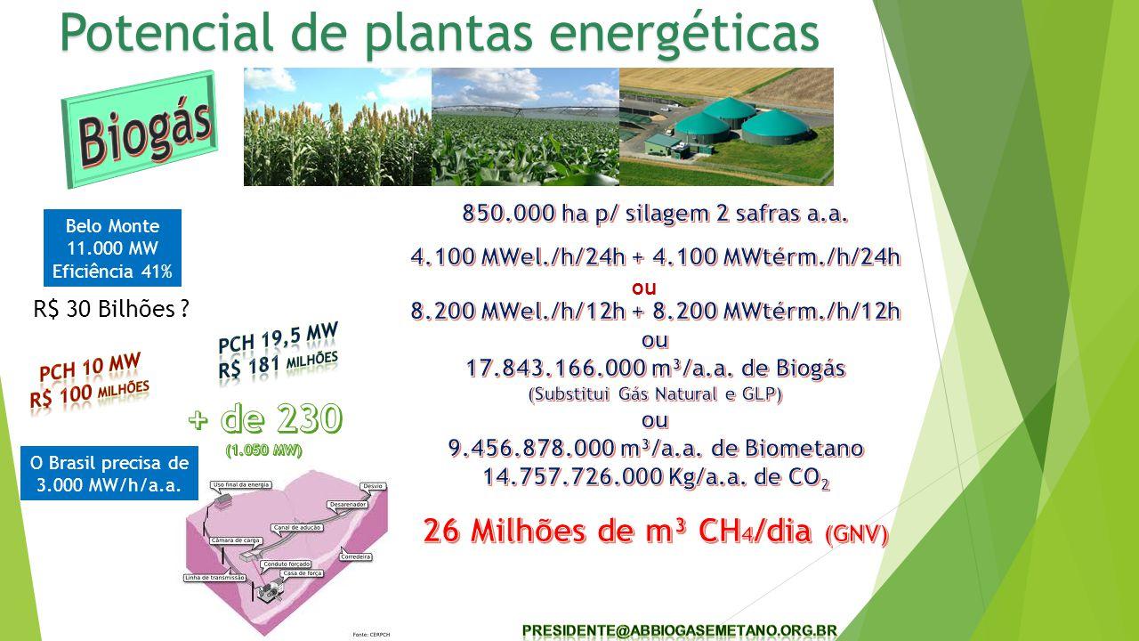 (Substitui Gás Natural e GLP) 26 Milhões de m³ CH4/dia (GNV)
