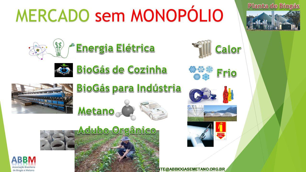 MERCADO sem MONOPÓLIO Energia Elétrica Calor BioGás de Cozinha Frio