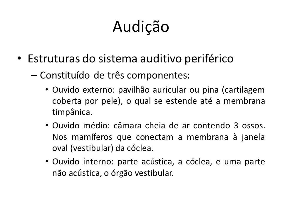 Audição Estruturas do sistema auditivo periférico
