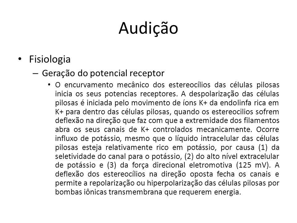Audição Fisiologia Geração do potencial receptor