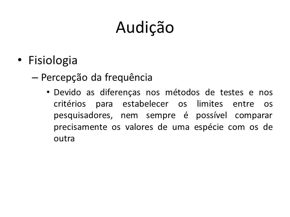 Audição Fisiologia Percepção da frequência