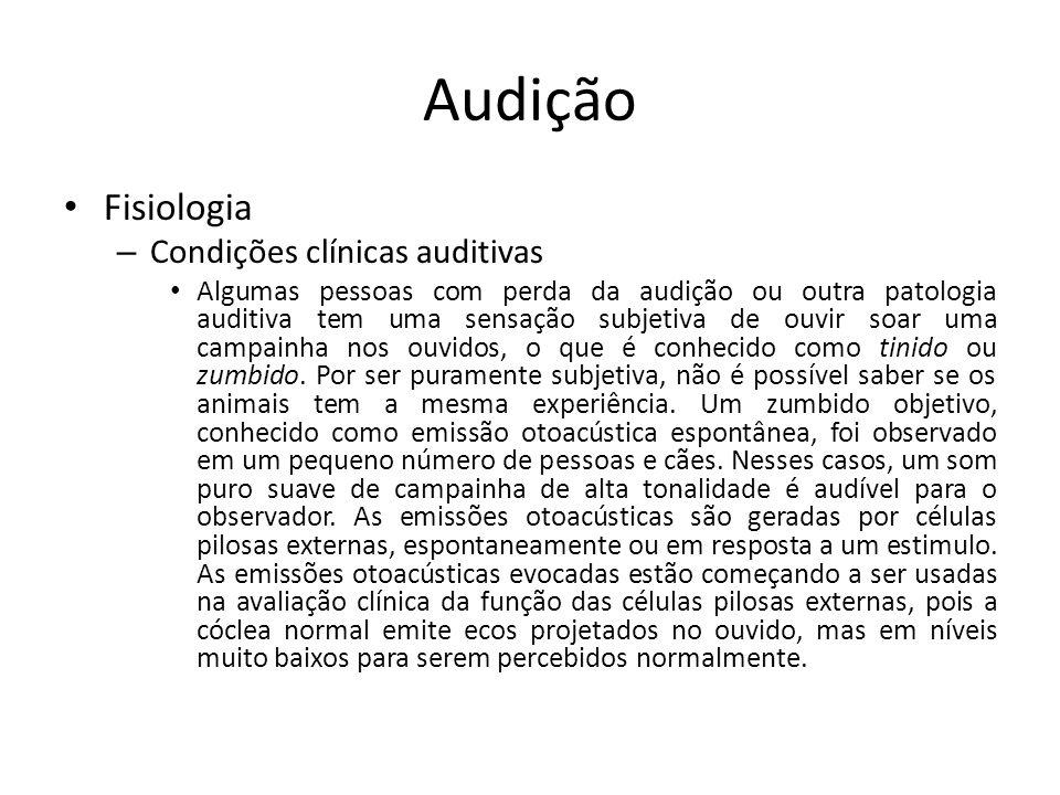 Audição Fisiologia Condições clínicas auditivas