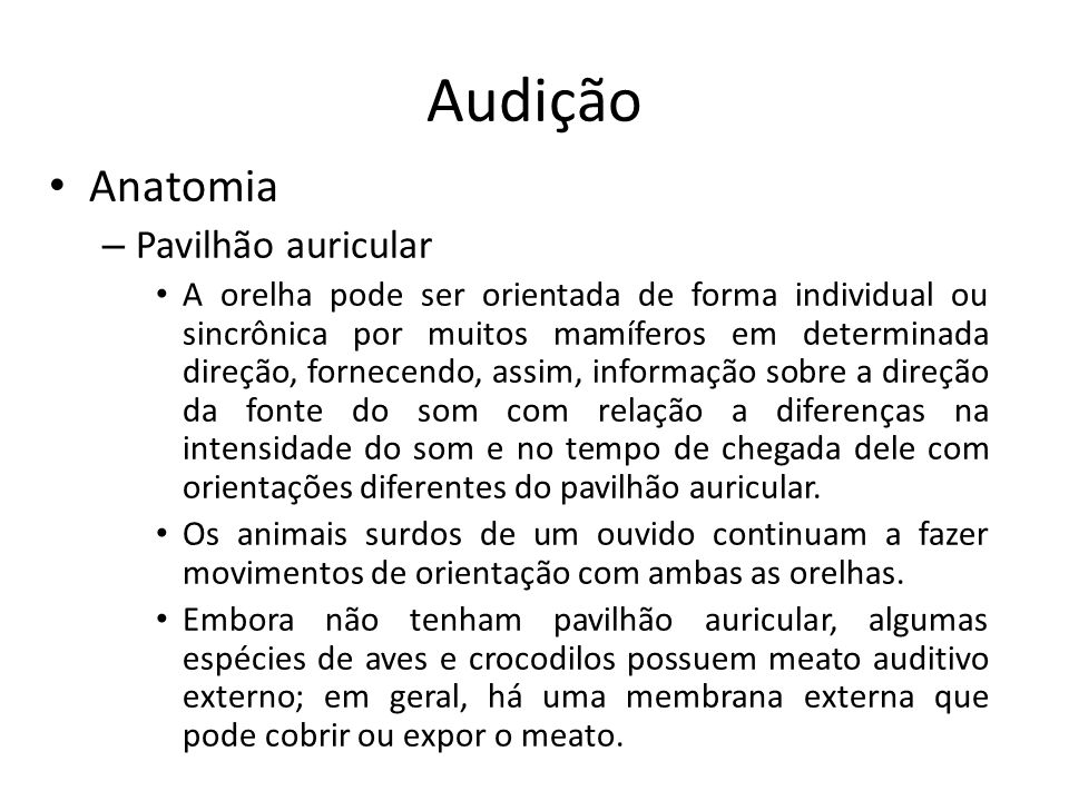 Audição Anatomia Pavilhão auricular