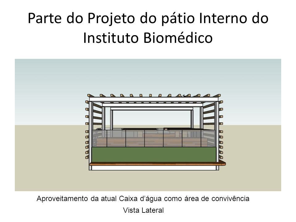 Parte do Projeto do pátio Interno do Instituto Biomédico
