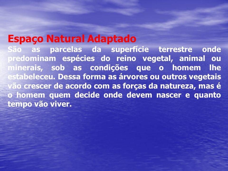 Espaço Natural Adaptado