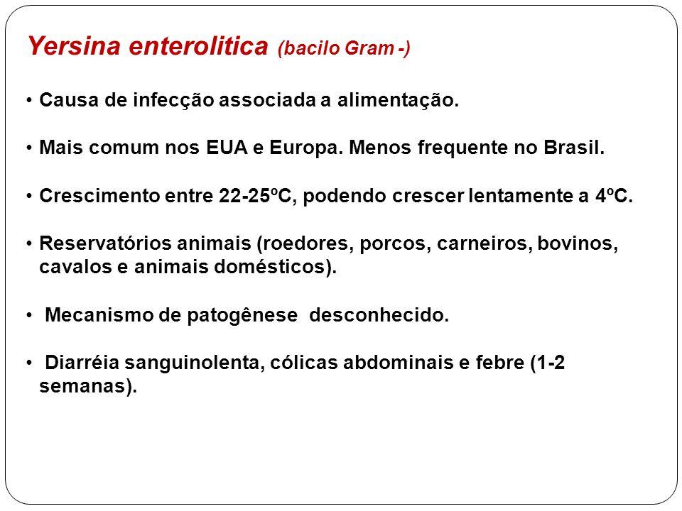 Yersina enterolitica (bacilo Gram -)