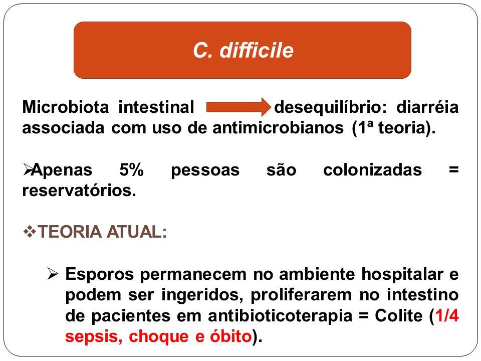 C. difficile Microbiota intestinal desequilíbrio: diarréia associada com uso de antimicrobianos (1ª teoria).
