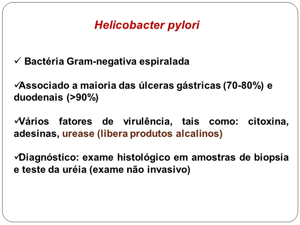 Helicobacter pylori Bactéria Gram-negativa espiralada