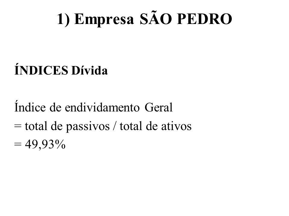 1) Empresa SÃO PEDRO ÍNDICES Dívida Índice de endividamento Geral