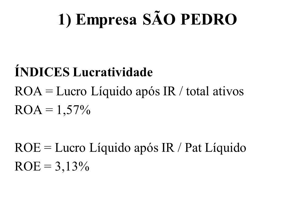 1) Empresa SÃO PEDRO ÍNDICES Lucratividade