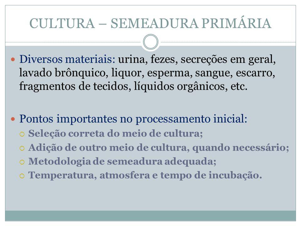 CULTURA – SEMEADURA PRIMÁRIA