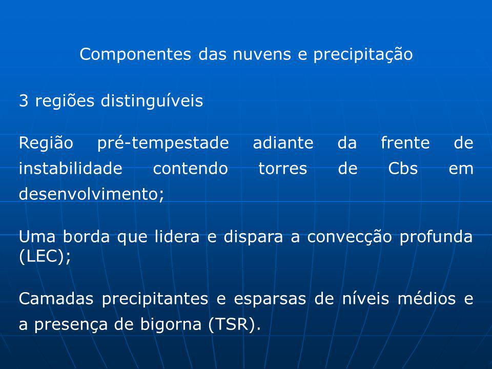 Componentes das nuvens e precipitação