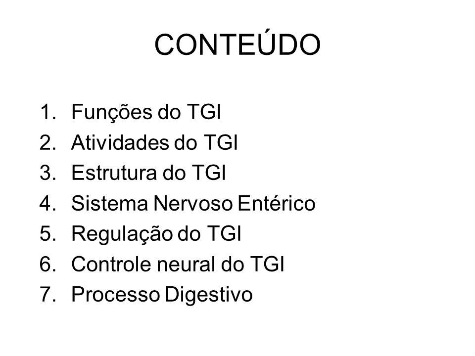 CONTEÚDO Funções do TGI Atividades do TGI Estrutura do TGI
