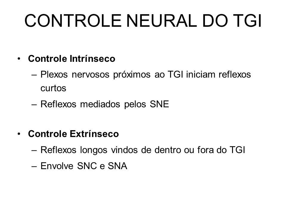 CONTROLE NEURAL DO TGI Controle Intrínseco