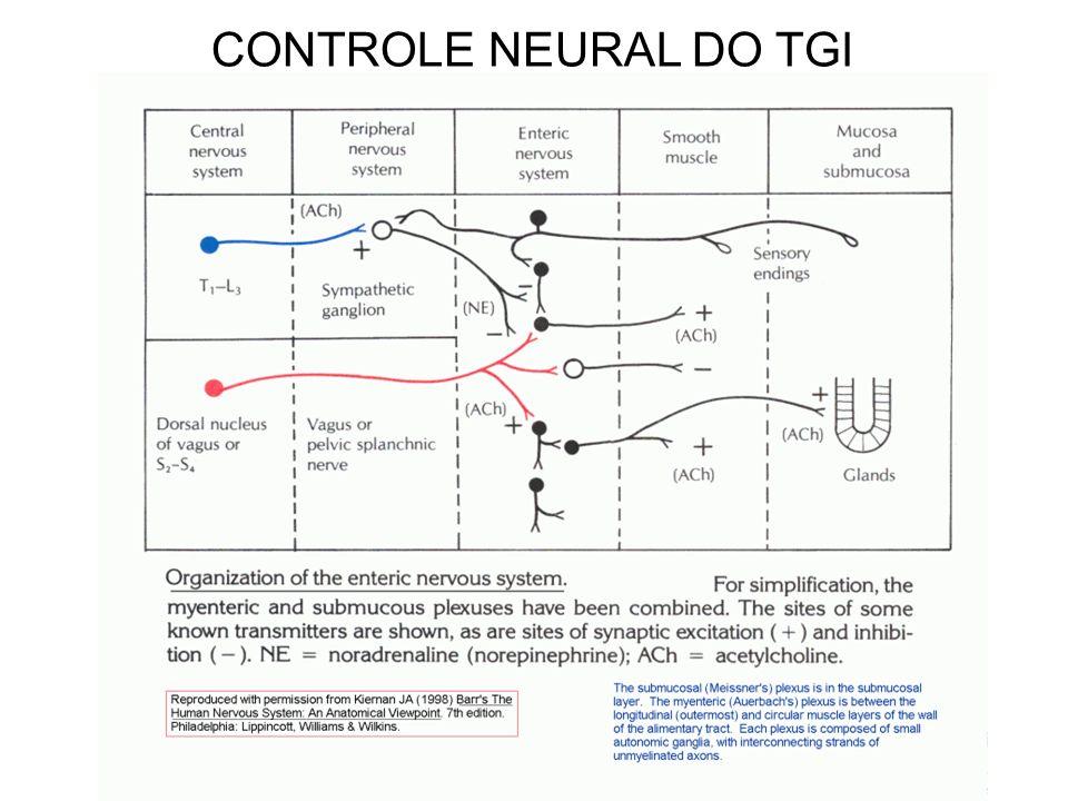 CONTROLE NEURAL DO TGI