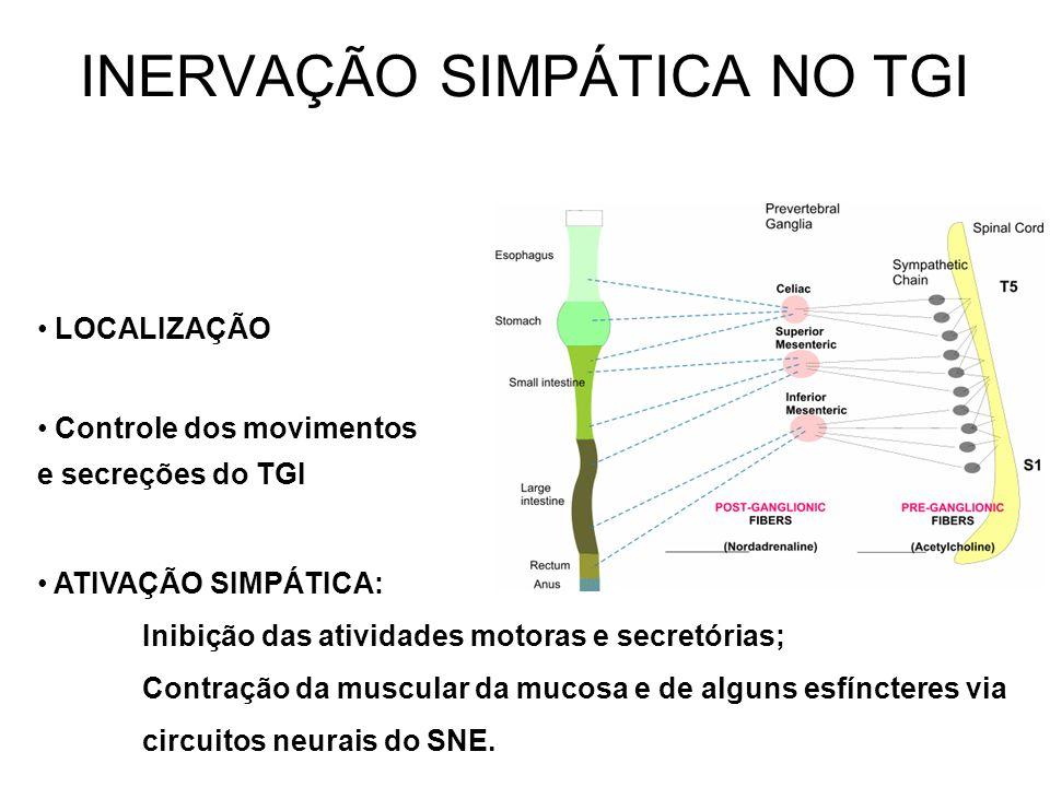 INERVAÇÃO SIMPÁTICA NO TGI