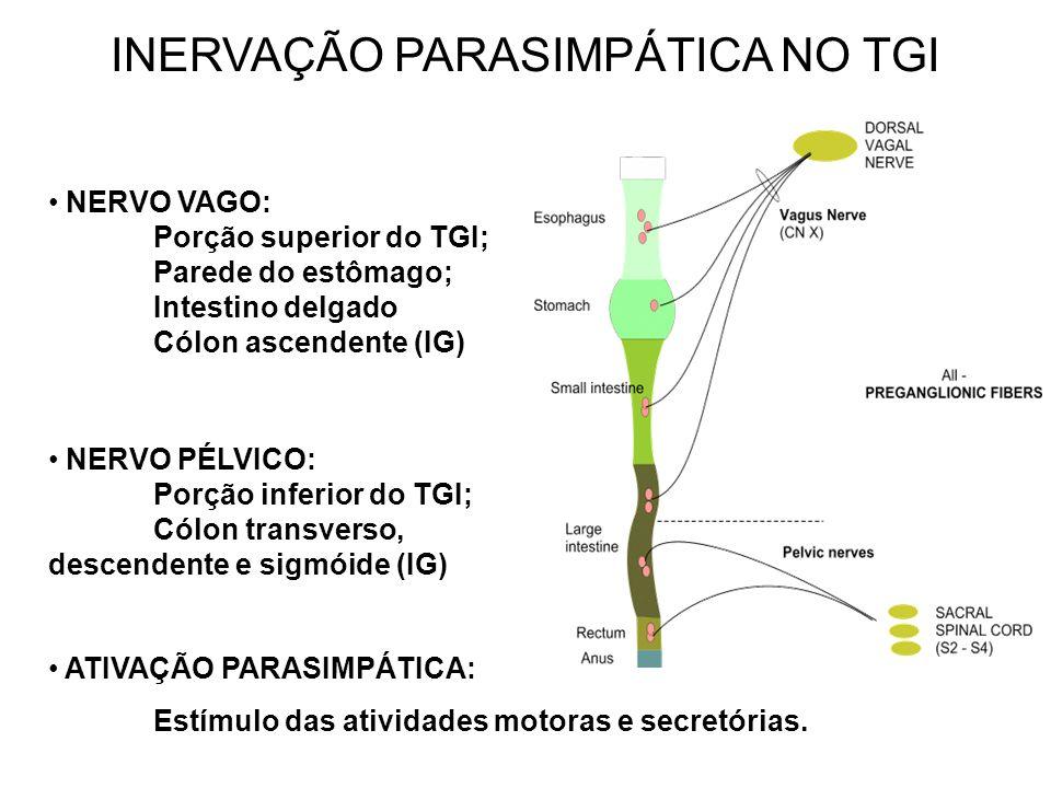 INERVAÇÃO PARASIMPÁTICA NO TGI