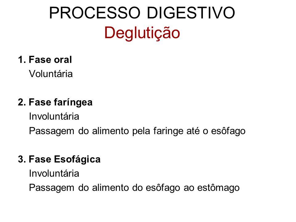 PROCESSO DIGESTIVO Deglutição