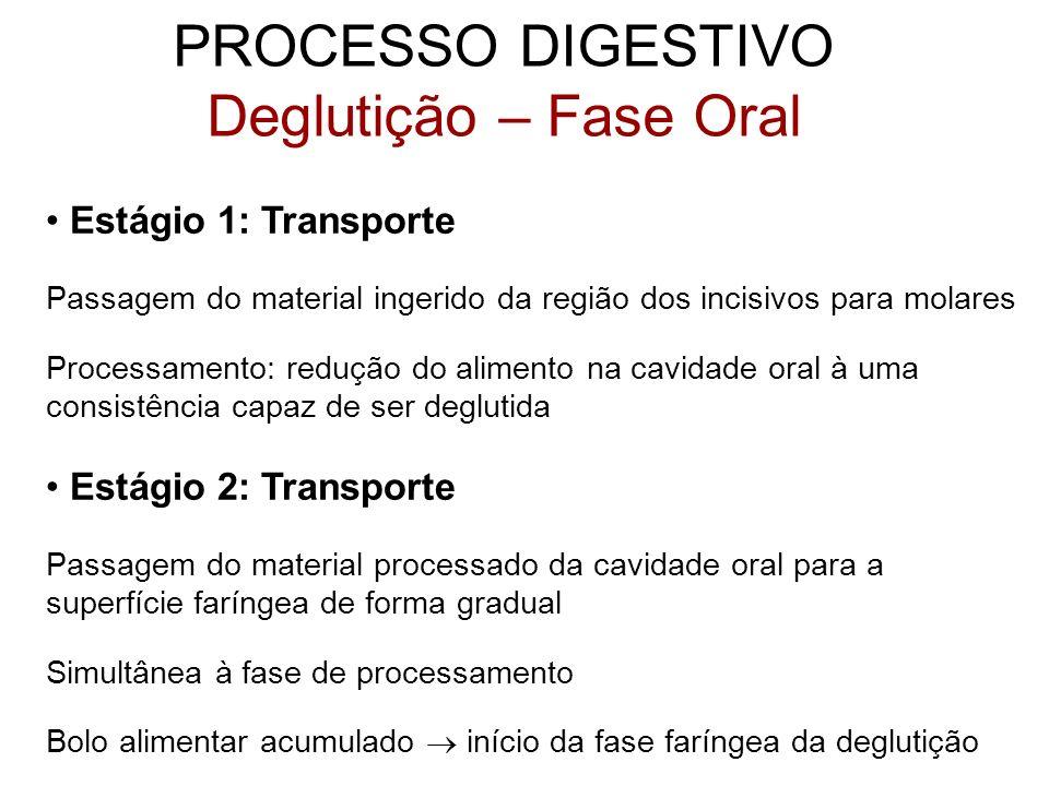 PROCESSO DIGESTIVO Deglutição – Fase Oral Estágio 1: Transporte