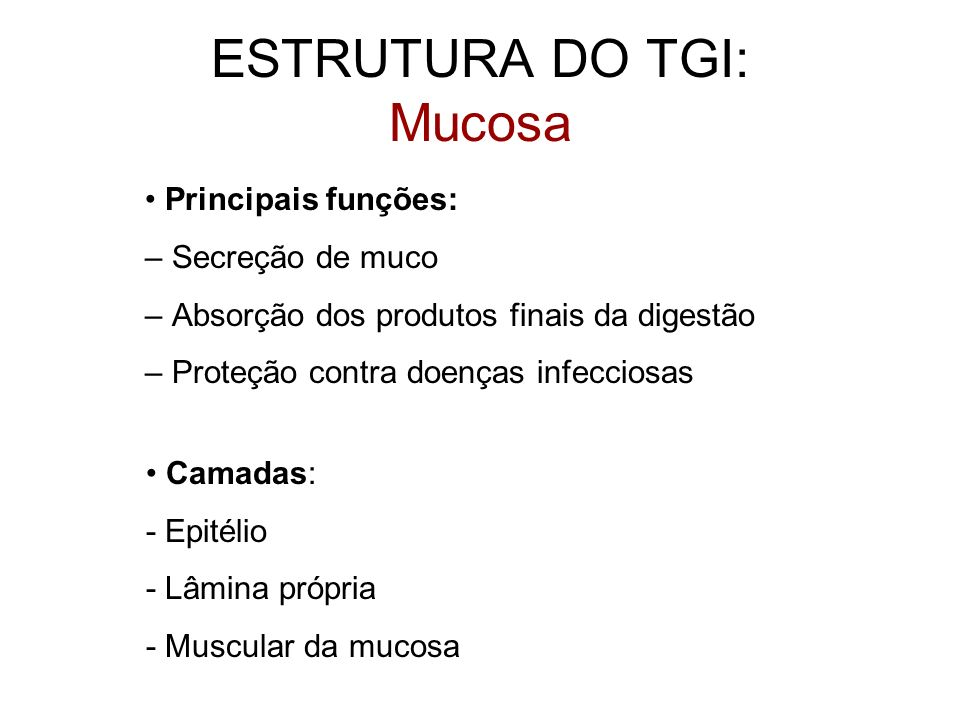 ESTRUTURA DO TGI: Mucosa