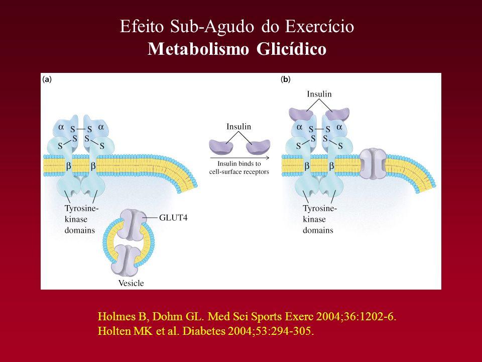 Metabolismo Glicídico