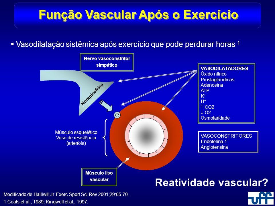 Função Vascular Após o Exercício