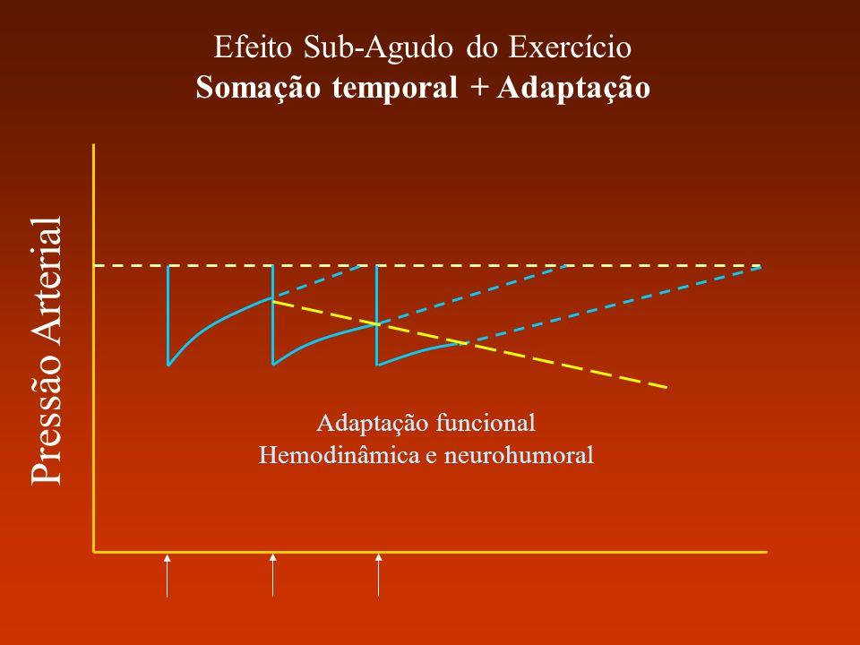 Somação temporal + Adaptação