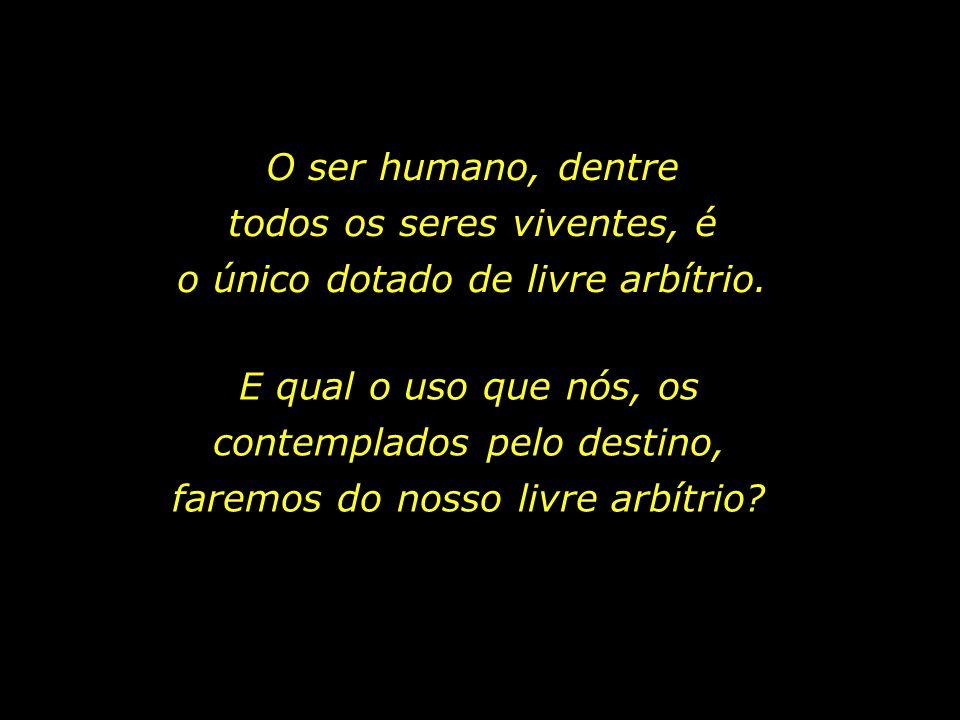 O ser humano, dentre todos os seres viventes, é o único dotado de livre arbítrio.