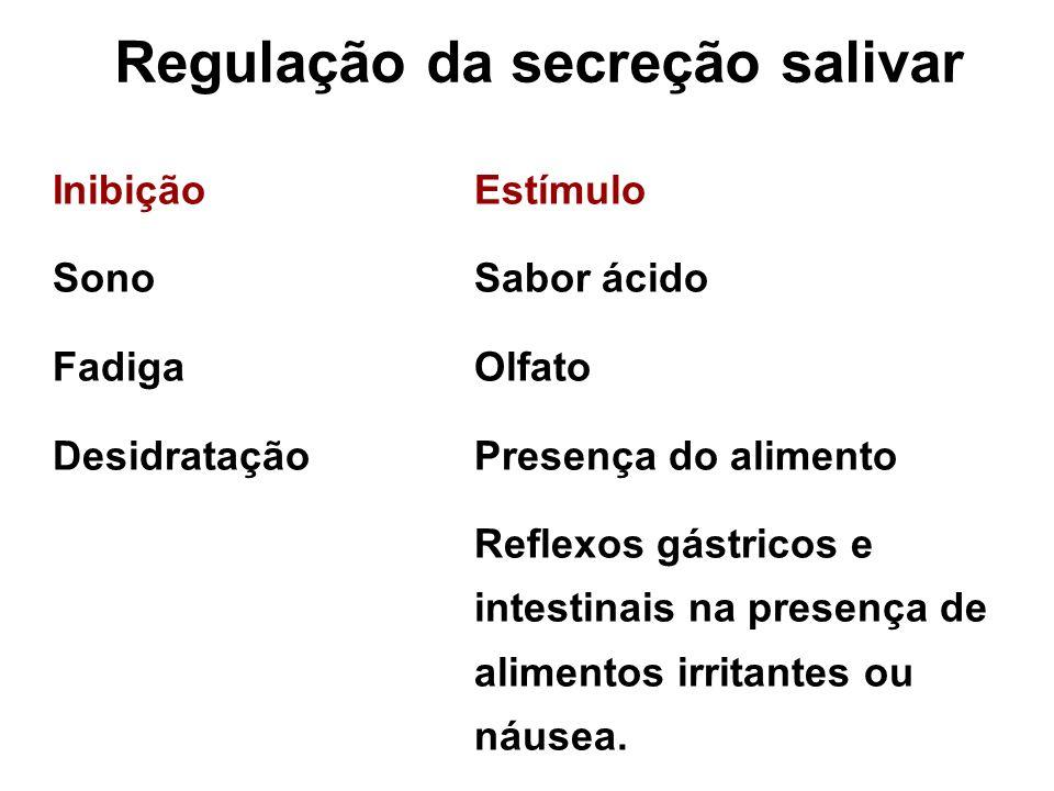 Regulação da secreção salivar