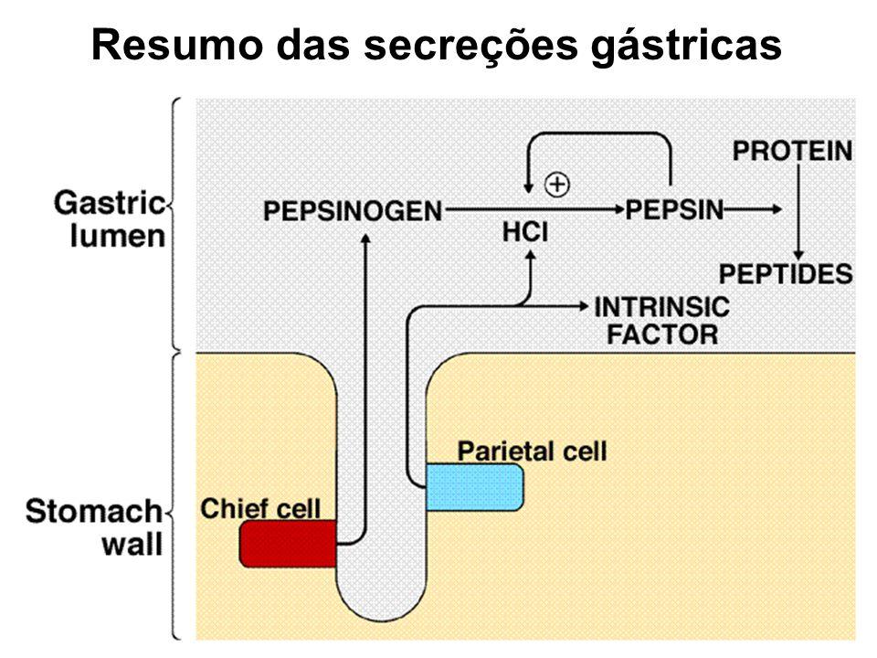 Resumo das secreções gástricas