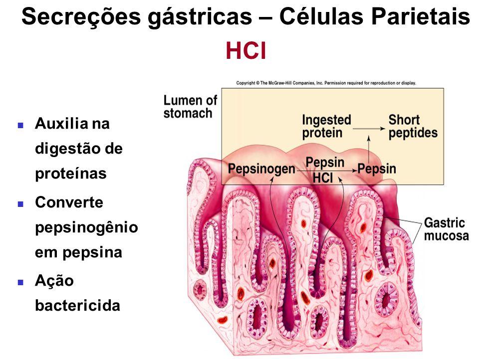 Secreções gástricas – Células Parietais