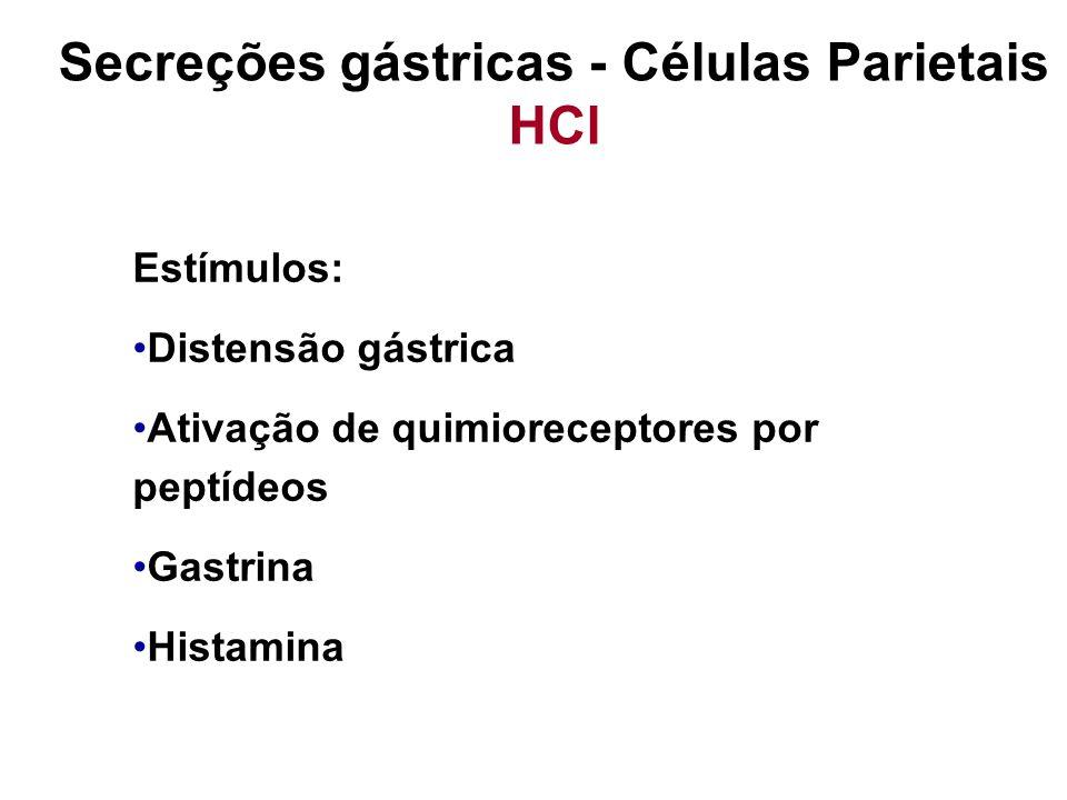 Secreções gástricas - Células Parietais HCl