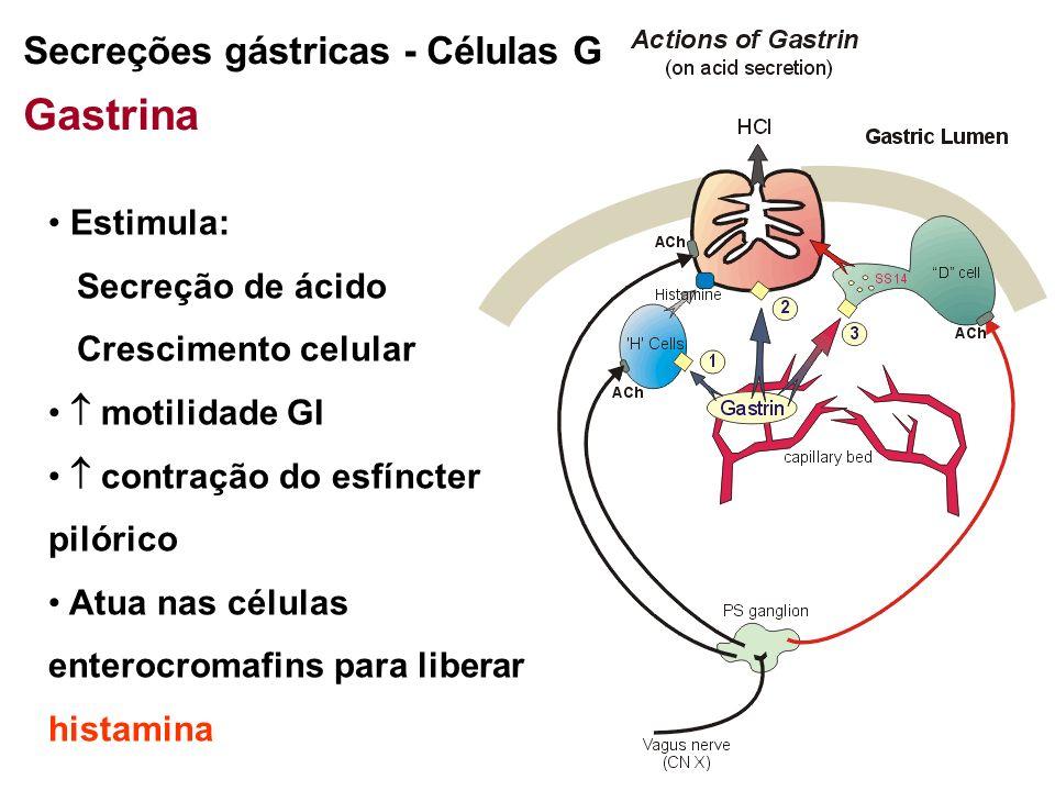 Gastrina Secreções gástricas - Células G Estimula: Secreção de ácido