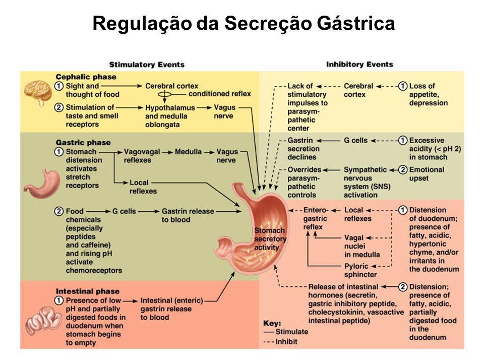 Regulação da Secreção Gástrica