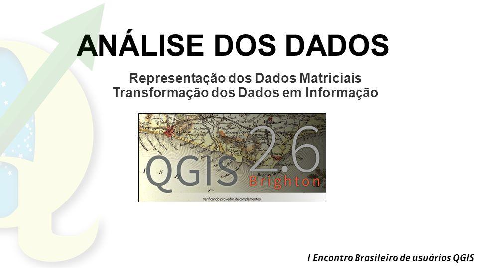ANÁLISE DOS DADOS Representação dos Dados Matriciais