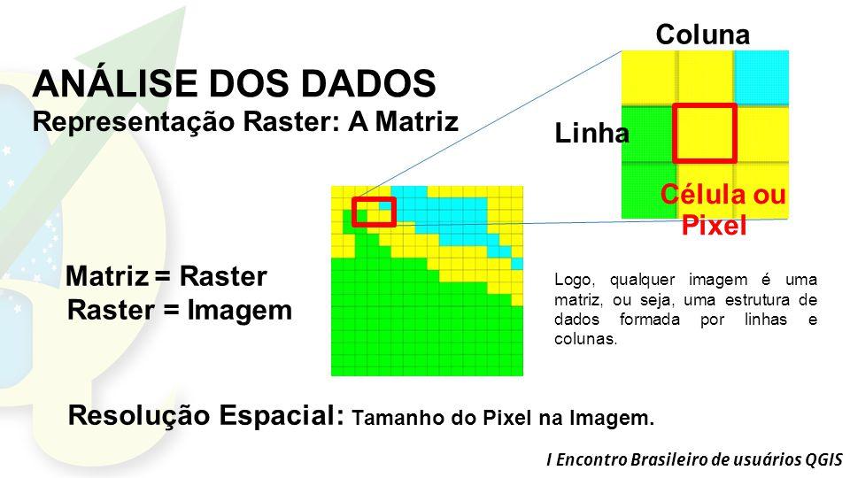 ANÁLISE DOS DADOS Coluna Representação Raster: A Matriz Linha