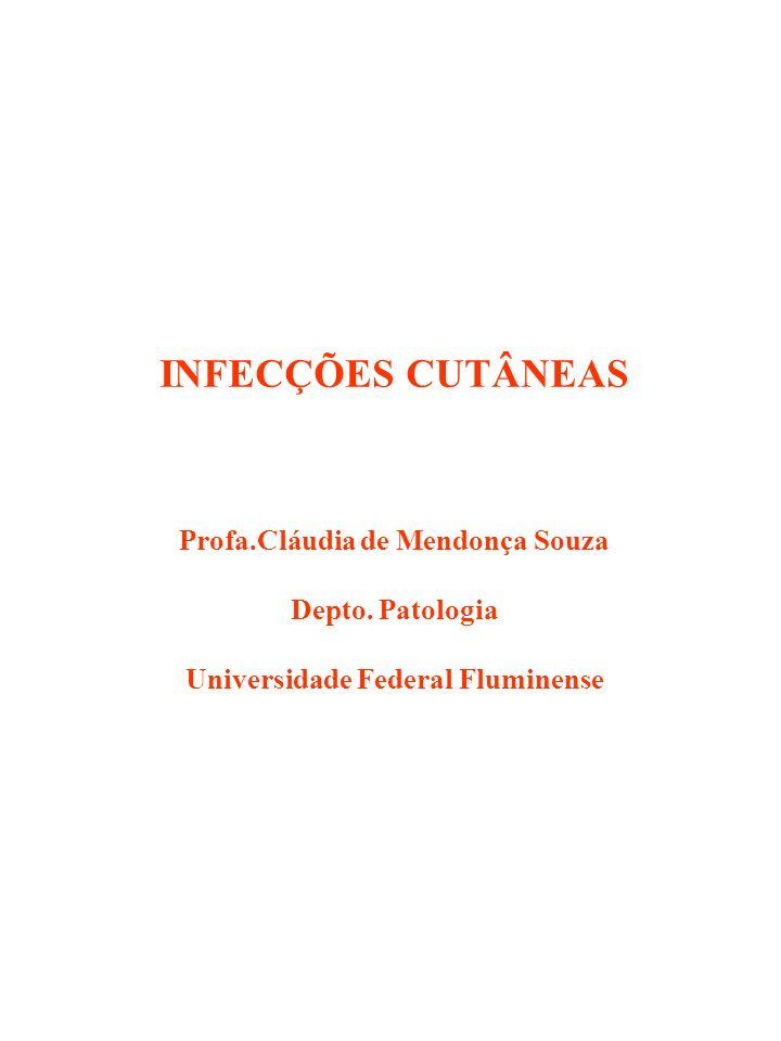 Profa.Cláudia de Mendonça Souza Universidade Federal Fluminense