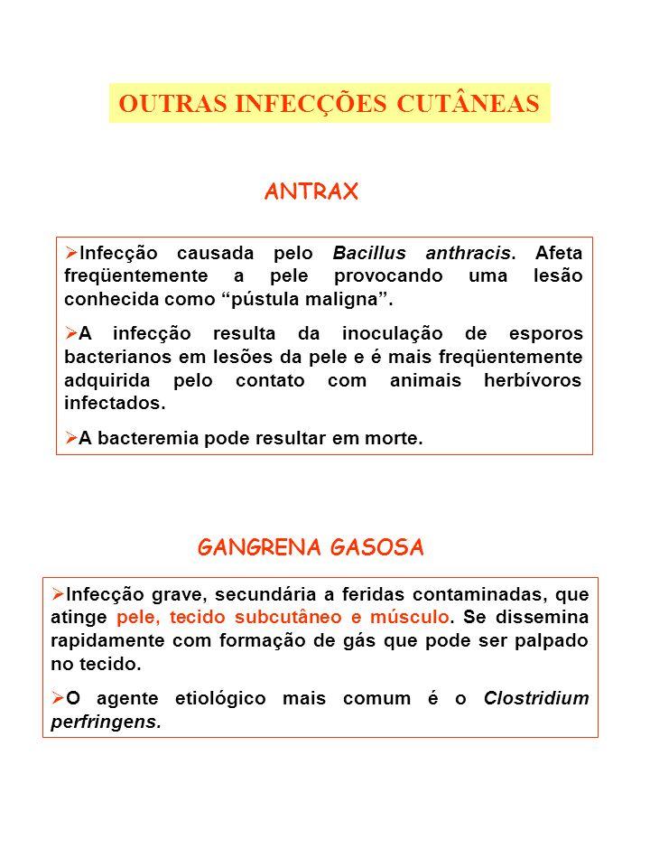 OUTRAS INFECÇÕES CUTÂNEAS