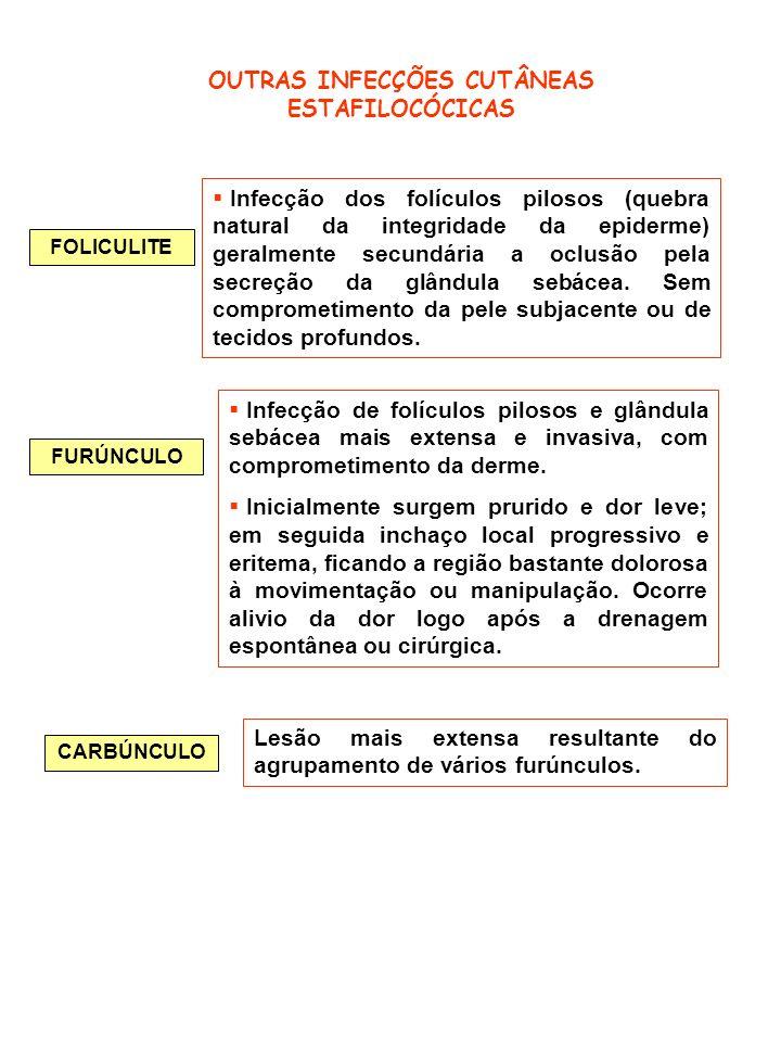 OUTRAS INFECÇÕES CUTÂNEAS ESTAFILOCÓCICAS