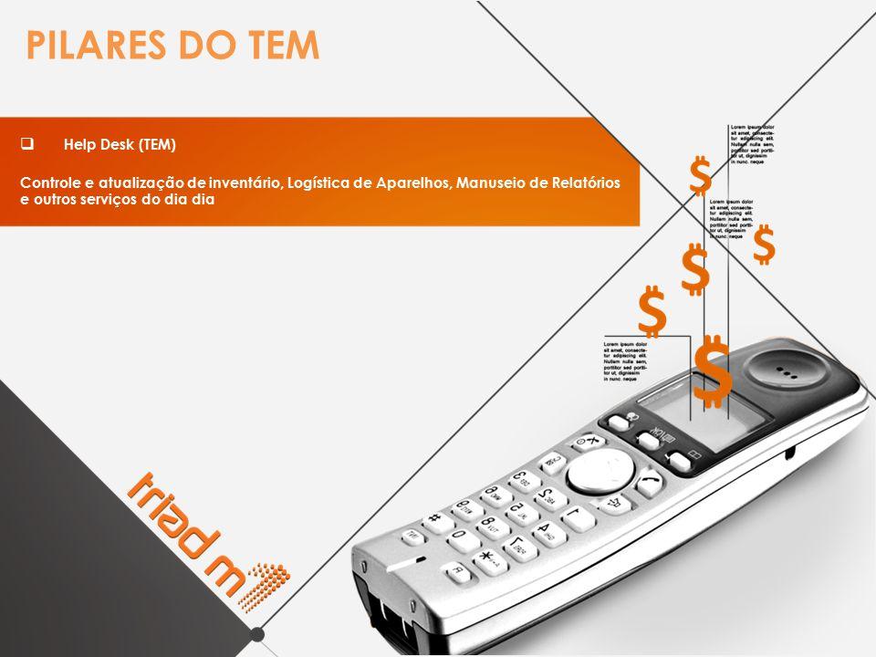 PILARES DO TEM Help Desk (TEM)