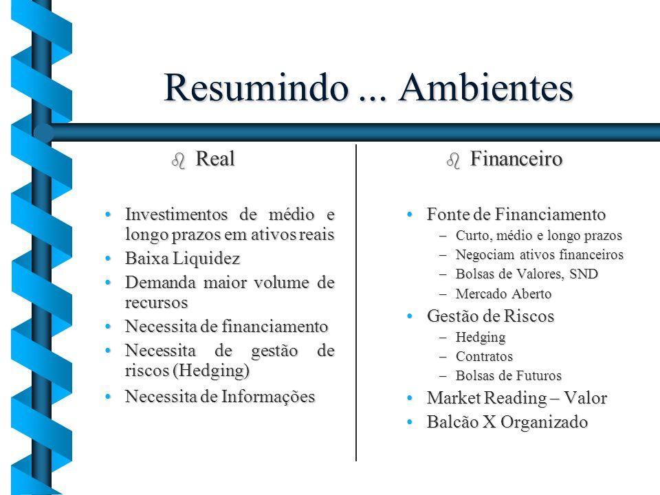 Resumindo ... Ambientes Real Financeiro