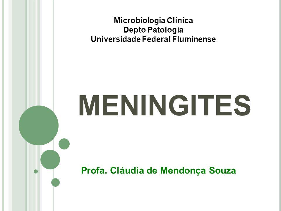 MENINGITES Profa. Cláudia de Mendonça Souza Microbiologia Clínica