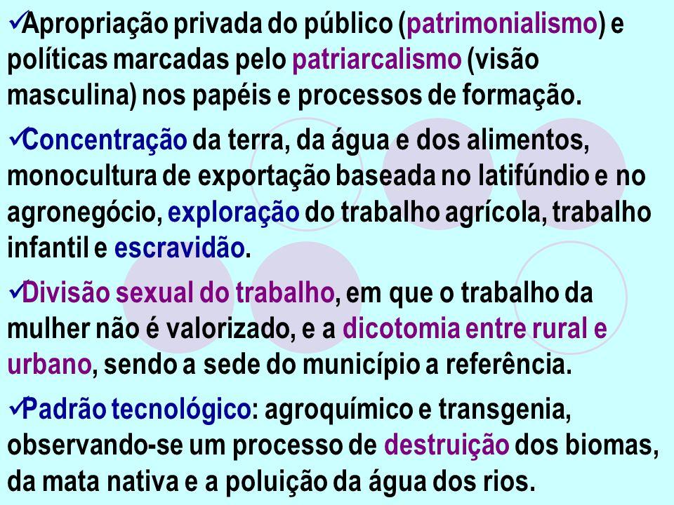Apropriação privada do público (patrimonialismo) e políticas marcadas pelo patriarcalismo (visão masculina) nos papéis e processos de formação.