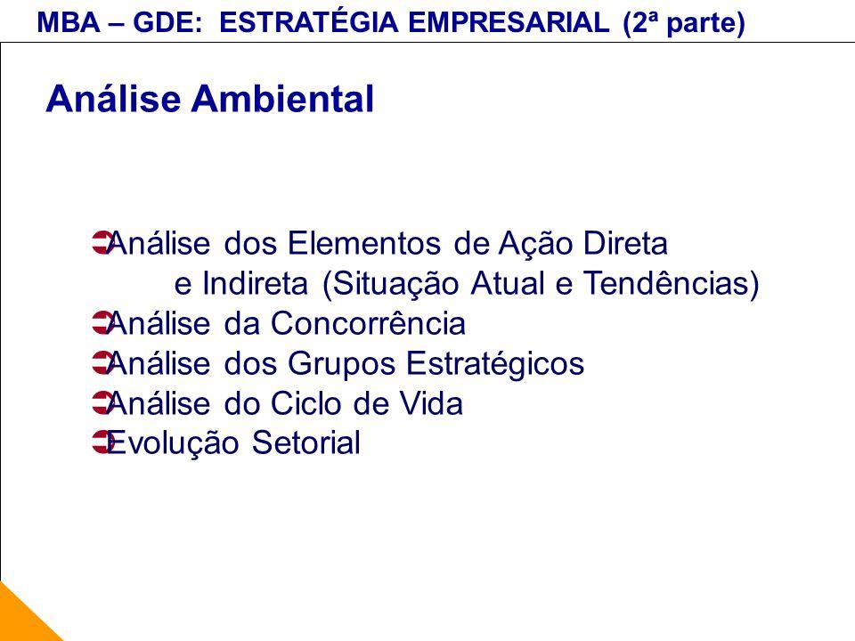Análise Ambiental Análise dos Elementos de Ação Direta