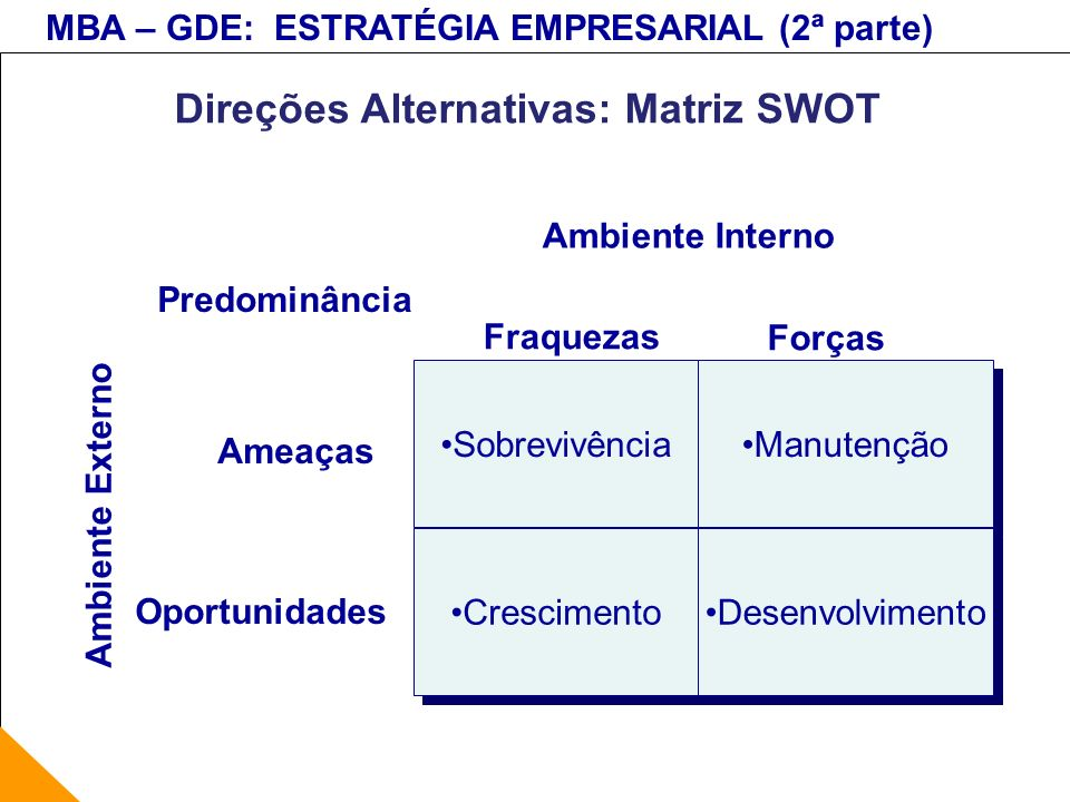 Direções Alternativas: Matriz SWOT
