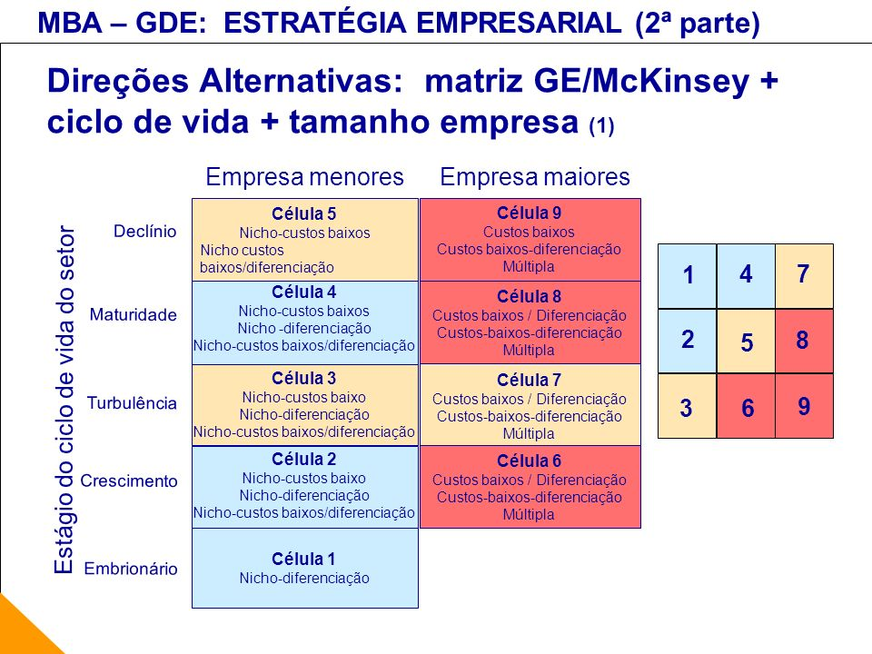 Direções Alternativas: matriz GE/McKinsey + ciclo de vida + tamanho empresa (1)